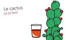 Le jus de cactus